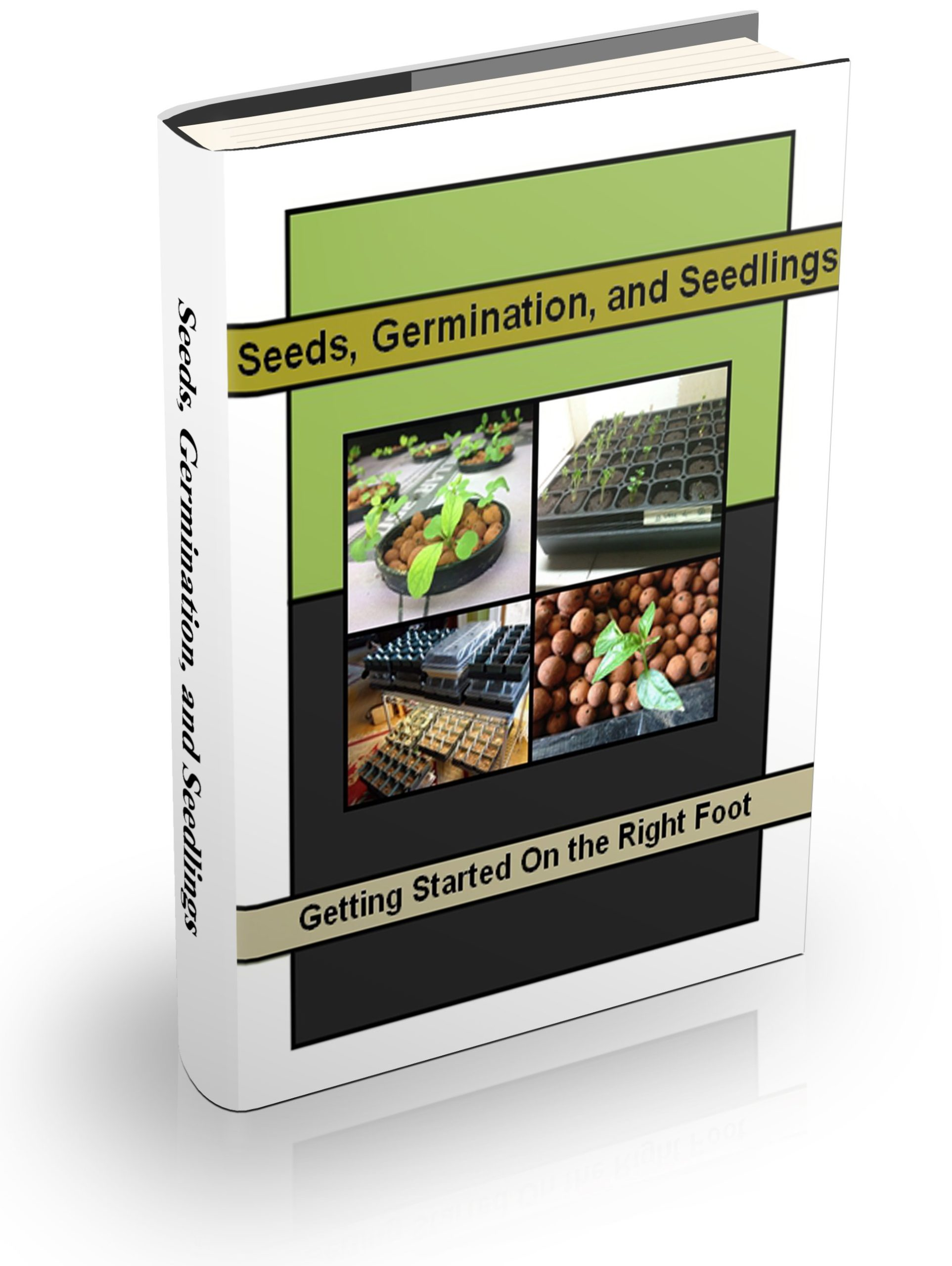 Seeds Germination Seedlings eBook
